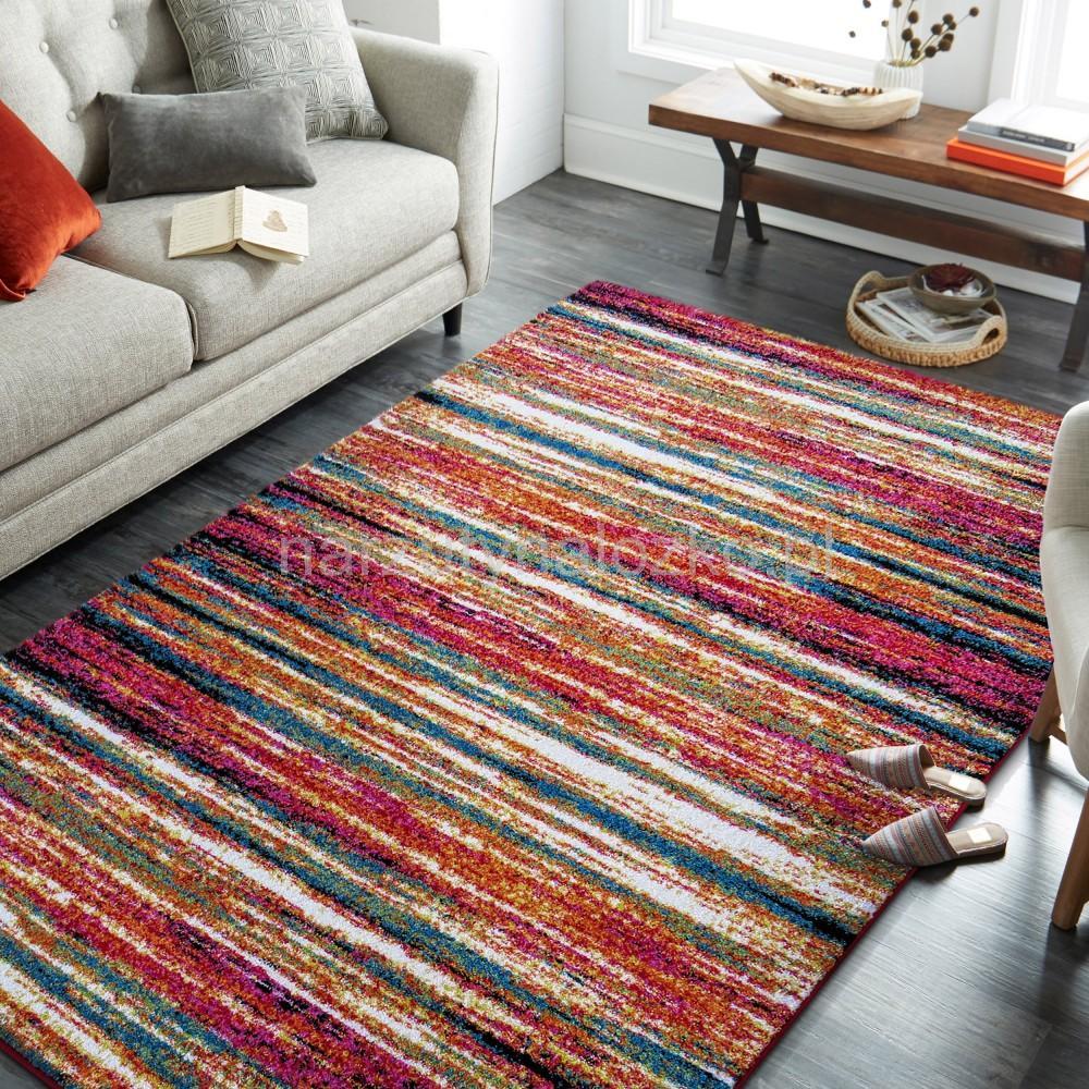 Nowoczesne Dywany Do Salonu W Paski 80x150